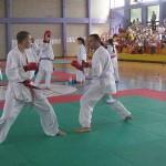 karate-osecina