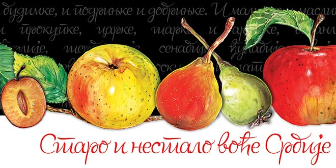 """ИЗЛОЖБА: """"Старо и нестало воће Србије"""""""