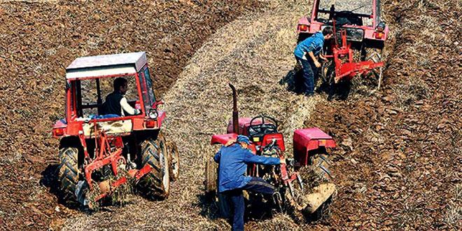 Konkursi Opštine Osečina za sprovođenje mera podrške razvoju poljoprivrede i ruralnom razvoju u 2017-oj godini