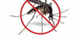 Obaveštenje o suzbijanju larvi komaraca na teritopriji opštine Osečina